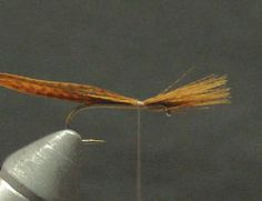 Fly Fishing & Fly Tying Information Resource – Hendrickson Dry Fly Pattern