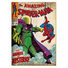 Marvel Spiderman Printed Canvas - 14x28