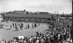 An Image of Baldoyle Racecourse taken in Ireland Homes, Old And New, Dublin, Old Photos, Irish, Dolores Park, Photographs, History, Travel