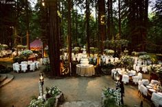 a spot of whimsy: Wedding | Fairy Tale Forest.