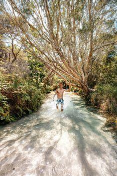 Coast Australia, Australia Travel, Wallpaper Travel, Neon Wallpaper, Fraser Island, Beautiful Places To Travel, Travel Goals, Amazing Destinations, Solo Travel