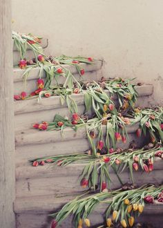 Tulip photograph - fine art photography print - vintage tulips spring stairs staircase dreamy  nature wooden red yellow. via Etsy.