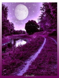 Purple Dream... A sweet dream of mystery, magic and spirituality...by ~mysteria-dl