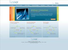 Website Design for Survivor Consulting -web design, logo design-