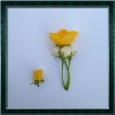 http://beautysnap.kr #예쁜스냅  #꽃그림  #꽃사진  #감성사진  #감성스냅  #데이트스냅  #커플스냅 #웨딩스냅 #프로필스냅 #일상스냅 #데이트스냅무료촬영이벤트  #셀카놀이 #김재식사진놀이