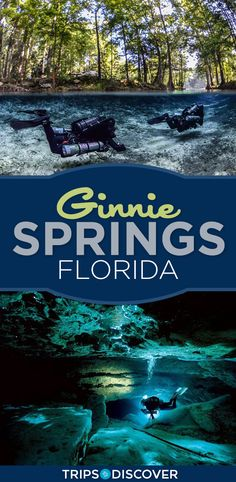 Float Your Worries Away at Florida's Clearest Spring