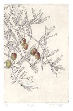 Bobbi Angell - Botanical Illustrator