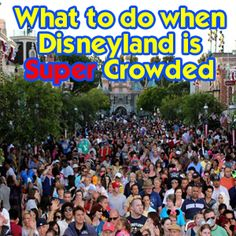 What to do when Disneyland is Super Crowded