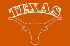 "Use this Exclusive coupon code: PINFIVE to receive an additional 5% off the Texas Longhorns 20"" x 30"" Rug at sportsfansplus.com"