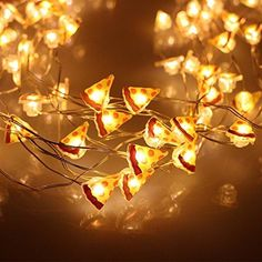 Christmas Lights,ER CHEN(TM) 8 Vines 200 Led Pizza,Warm W