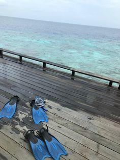 Blog Post: Park Hyatt Maldives Hadahaa   Over Water Villa PetiteJilly.com Water Villa, Snorkelling, Visual Diary, Maldives, Beautiful Homes, Boat, Island, Park, Travel