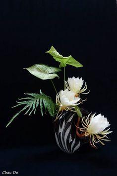 Ikebana by Chau Do