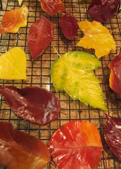 "Fall leaves persevered by dipping in wax. Pinner wrote, ""I used a scented candle wax so they smell as wonderful as they are beautiful"""