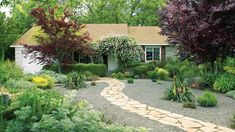 Lawn-free makeover