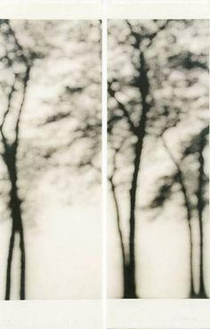 Jeri EISENBERG :: Lakeshore, Chicago, 2006 [Archival pigment ink on Japanese paper infused with encaustic]