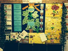 Purposeful Plants UOI Display -Grade 1