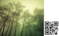QR codes in a gallery, connecting the art on the wall with music on your iPhone