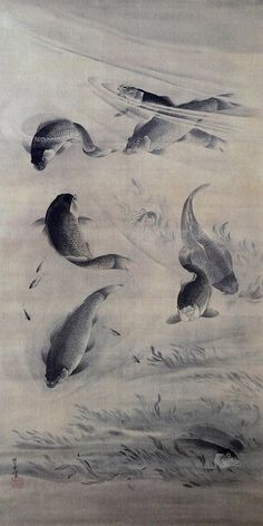Carp fish swimming by Kawanabe Kyosai Japanese Artwork, Japanese Prints, Japan Painting, Ink Painting, Hokusai, Art Asiatique, Japan Art, Japan Japan, Japanese Illustration