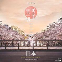 【hj_snap】さんのInstagramをピンしています。 《. 2017 일본 벚꽃 스냅 _ HJ-SNAP . 스냅진행지역 . tokyo · kyoto · osaka · nara (그 외 지역 별도협의) . 스냅일정 . from 03.24 until 04.10 * 24~29 도쿄확정 (타지역 가능) 30~ 교토 확정 (전후 날짜 별도협의) . 스냅안내 . 시간당 타입 존재하며 풀타임 및 1박2일 이상의 커스텀타입까지 있습니다.  1~2시간 타입은 간단한 1~1.5스팟 촬영에 적당하며 핵심 만을 빠르게 촬영할 수 있습니다.  3~5시간 타입은 더욱 다양하게 일본 곳곳을 느끼며 여유롭게 촬영 그리고 선셋, 야간촬영까지 !  풀타임 타입은 집중적으로 풀웨딩스냅을 해외에서 진행할 수 있으며 2도시 연결에도 용이합니다. . 기타옵션 . 차량옵션 이용을 통해 편하게 공항/시내 픽업부터 촬영이동, 환복, 짐보관 그리고 드랍오프까지 가능 ! 교토 기모노샵 , 헤어 및 메이크업을 저렴하게…