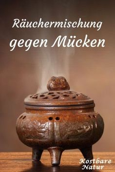 Mücken durch Räuchern vertreiben With this incense mixture of local herbs, you simply keep mosquitoes away. Plants That Repel Bugs, Cool Plants, Citronella Plant, Best Mosquito Repellent, Keeping Mosquitos Away, Best Perennials, Mosquito Repelling Plants, Herbs Indoors, Organic Gardening Tips