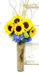 Sunflower Garden from Mockingbird Florist in Dallas, TX