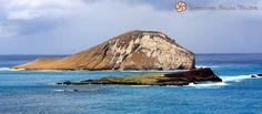 Rabbit Island - South Shore Oahu