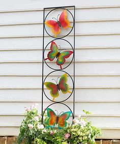 Another great find on #zulily! Butterfly Trellis #zulilyfinds