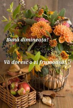 Italian Memes, Animals And Pets, Good Morning, Plants, Facebook, Pictures, Fotografia, Polish Sayings, Italian Greetings