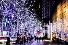 A comemoração de natal é recente na vida dos japoneses. O país aderiu a festa em meados dos anos 60 por conta da influência ocidental e mesmo assim já é famoso por ser um dos países mais bonitos nessa época do ano.   CT Operadora Todos os destinos, seu ponto de partida #CToperadora #Queroconhecer #Tóquio #Seumelhordestino #Natal #merrychristmas #Feliznatal