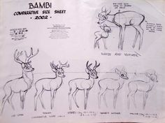 """""""Bambi""""   © Walt Disney Animation Studios* • Blog/Website   (www.disneyanimation.com) • Online Store   (http://www.disneystore.com) ★    CHARACTER DESIGN REFERENCES™ (https://www.facebook.com/CharacterDesignReferences & https://www.pinterest.com/characterdesigh) • Love Character Design? Join the #CDChallenge (link→ https://www.facebook.com/groups/CharacterDesignChallenge) Share your unique vision of a theme, promote your art in a community of over 50.000 artists!    ★"""