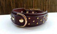 Leather Dog Collar / Custom Dog Collar / Black Leather Dog Collar / Brown Leather Collar / Brass Collar / The Caesar