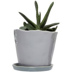 Dot & Bo Lori Large Planter - Light Gray ($22) ❤ liked on Polyvore featuring home, outdoors and outdoor decor