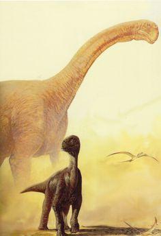 Camarasaurus - Jan Sovak