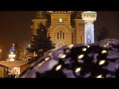 Timisoara - Visul unei seri de iarna Christmas Tree, Holiday Decor, Photography, Xmas Tree, Xmas Trees, Photograph, Fotografie, Christmas Trees, Fotografia