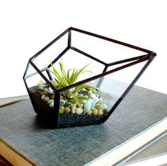 Small Terrarium Pod With Air Plant, Geometric Planter