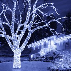 68 best snowtime christmas 2014 images on pinterest christmas 2014 300 connectable led lights ice white ukchristmasworld barnsley christmas decoration aloadofball Image collections