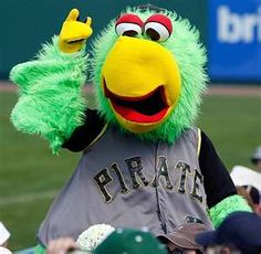 The Pirate Parrot
