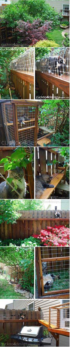 Cuckoo 4 Design: Cuckoo for my cats! cuckoo4design.blogspot.com