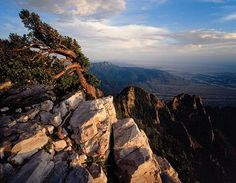 Wild and Free:  Celebrating the Wilderness Act's 50th anniversary in the state that started it all http://mynm.us/wildfreenmmag via New Mexico Magazine