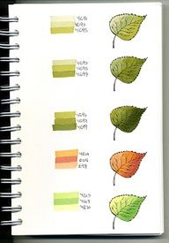 Leaf Blended Colors With Copic Marker Copic Marker Art, Copic Sketch Markers, Copic Art, Tombow Markers, Coloring Tips, Colouring Pages, Coloring Books, Adult Coloring, Copic Kunst