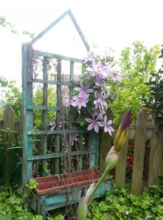 Clematis and Iris