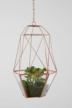 Magical Thinking Hanging Copper Cocoon Terrarium