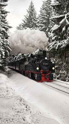 Steam locomotive in the snow...  so peaceful...