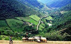 Iran - Land of Dreams: Shekardasht countryside, Talesh, Gilan province, Iran (in Persian:   منطقه ييلاقي شکردشت,  در ارتفاعات بالاتر از ۱۷۰۰ متر، در شمال شهرستان تالش)