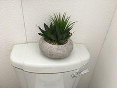 Toilet, Planter Pots, Flush Toilet, Toilets, Toilet Room, Bathrooms