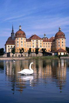 Schloss Moritzburg (Moritzburg Castle), Dresden, Saxony, Germany