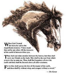 The Koran Horse's Prayer Horse Poems, Horse Quotes, My Love Poems, Cowboy Quotes, Equestrian Quotes, Horse Crafts, Wild Mustangs, Horse Girl, My Ride