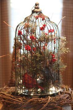 Red Cardinal bird cage