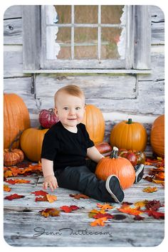 Baby Photography halloween mini session