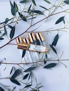 WILD FREESIA Natural Roll-On Perfume by Wood & Wax, Co.